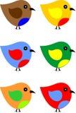 sällan fågel Arkivbild