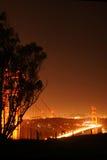 sällan guld- perspektiv för port Royaltyfria Bilder