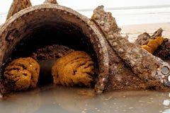 Sänd haveriet, den cornish haveriet cornwall UK för den Duckpool stranden Fotografering för Bildbyråer