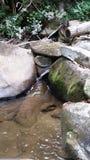 Sänftenwasserfall gießt lizenzfreie stockfotos