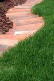 Säng för dekorativ trädgård och gräsmattagräsbana arkivbild