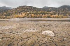 Säng för torr sjö på sjön Kruth-Wildestein i höst med sprucken torr botten av sjön royaltyfri foto