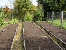 Sängarna för grönsaker i ryssland arbeta i trädgården Royaltyfria Foton