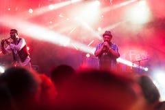 Sänger in der Konzertbeleuchtung Lizenzfreies Stockbild