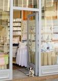 sängkläderhundingången little shoppar att sitta arkivbilder