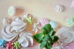 Sänka den organiska efterrätten för lekmanna- vit sommarmarängmat och succulen Arkivbilder