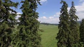 Sänka du Marchairuz el 1447 M Är ett passerande för högt berg i Jura Mountains i kantonen av Vaud i Schweiz stock video