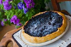 Tårta med blåbäret Royaltyfri Fotografi