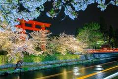 Säsong för körsbärsröd blomning för Japan ` s Arkivbild
