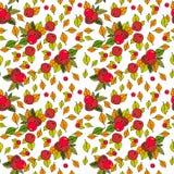 Säsong för nedgång för Autumn Seamless Pattern Background Colorful sidaprydnad Royaltyfri Foto