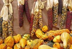 säsongsbetonad indier för kalebasser för bakgrundsburlaphavre arkivfoto