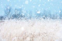 Säsongsbetonade bakgrunder med snöfall fotografering för bildbyråer