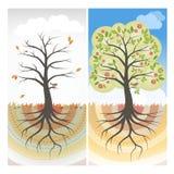 Säsongsbetonade träd Fotografering för Bildbyråer