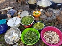 Sätta in ätliga växter för matlagning i tarmar och sätter på branden arkivfoton