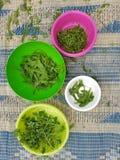 Sätta in ätliga växter för matlagning i tarmar och sätter på jordningen royaltyfri bild