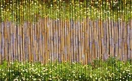 Blommor och bambu inramar Royaltyfri Foto