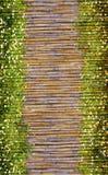 Blommor och bambu inramar Royaltyfri Fotografi