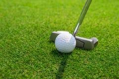 Sätta en golfboll på gräsplanen Royaltyfri Foto