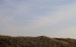 Sätta fransar på på sanddyn Royaltyfria Bilder