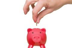 Sätta myntet in i spargrisen - besparingbegrepp ferie Tra Arkivfoto