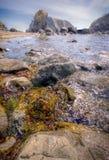 sätta på land den steniga ligganden Arkivbild