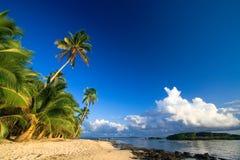 sätta på land det tropiska paradiset Royaltyfri Bild