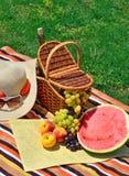 Sätta på land hatten, solexponeringsglas, picknickkorgen med frukter och flaskan av Fotografering för Bildbyråer