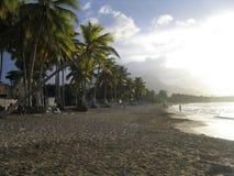 sätta på land karibiskt Fotografering för Bildbyråer