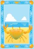 sätta på land krabban Fotografering för Bildbyråer