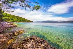 Sätta på land landskap med sörjer trädet i Kroatien, Istria, Europa arkivbilder