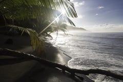 Sätta på land på soluppgång, den Corcovado nationalparken, Costa Rica Arkivfoton