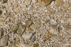 sätta på land pebblen Arkivfoto