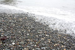 sätta på land pebbles Fotografering för Bildbyråer