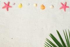 Sätta på land sand med starfishs, skal och kokosnötsidor royaltyfri bild