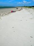 sätta på land sandiga sunbathers Royaltyfri Foto