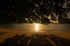 sätta på land solnedgången Royaltyfri Foto