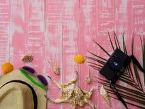 Sätta på land tillbehör inklusive sunscreen, hattstranden, skal och coco arkivfoto