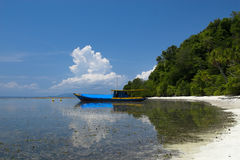 sätta på land tropiskt Royaltyfri Foto