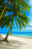 sätta på land tropiskt Arkivfoton