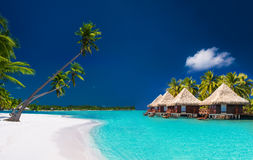 Sätta på land villor på en tropisk ö med palmträd och vit beac arkivfoto