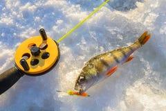Sätta sig fisken med stången som ligger på isen, closeup lies för fiskeis bara blockerade vinterzander Arkivfoto