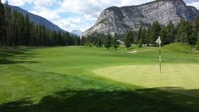 Sättande gräsplan för golf i berg Arkivbilder