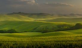 Sätter in av tuscany i morgonen lätt Fotografering för Bildbyråer