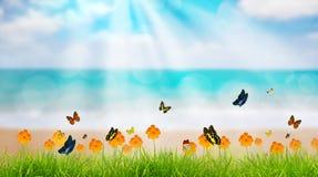 Sätter på land grönt gräs för den nya våren med fjärilen och blomman nära, S royaltyfri illustrationer