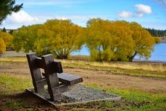 Sätter på land iklädda gula sidor för träd under höst på Pines, sjön Tekapo Fotografering för Bildbyråer