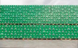 Sätze des abgefüllten Bieres im Brauereispeicherlos Stockfoto