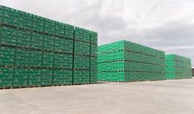 Sätze des abgefüllten Bieres im Brauereispeicherlos Stockfotografie