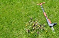 Säubern Sie Abbau eigenhändig - Rasenwartungswerkzeug und Unkräuter 1 Stockfotos