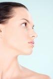 Säubern Sie Hautfrau Stockbild