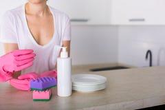 Säubern Sie Teller in der Küche Stockfoto